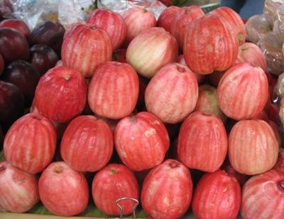 Syzygium malaccense (pink fruit) 26