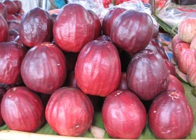 Syzygium malaccense (ruby fruit) 23