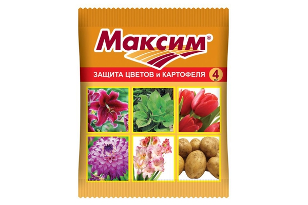 Флудиоксонил / Максим