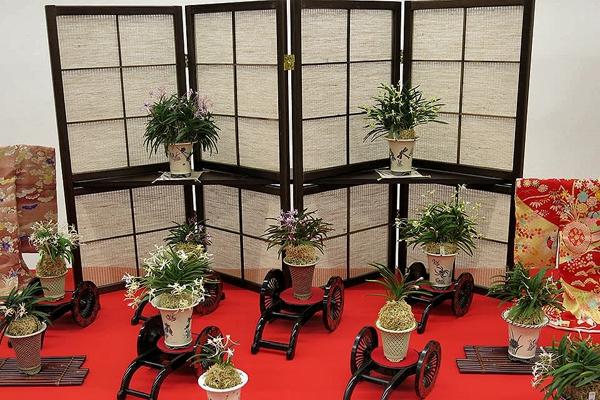 69-я ежегодная выставка «All Japan Fuukirankai Show»