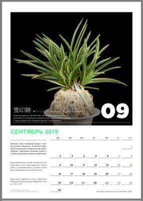 calendar page 10
