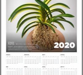 """Настенный календарь """"Неофинетия"""" 2019"""