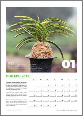 calendar page 2