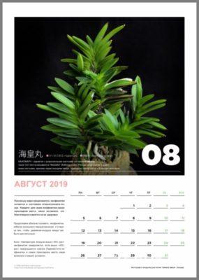 calendar page 9